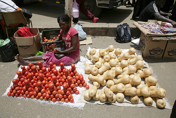 Zimbabwe Celebrates Women Entrepreneurship Day